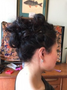 finished hair updo